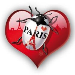 Coeur rouge Tour Eiffel